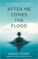 after-me-comes-the-flood
